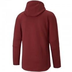 Sweatshirt Puma EVOSTRIPE